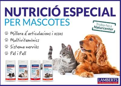 NutricióMascotes_Lamberts