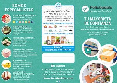 Flyer_Feliu-1